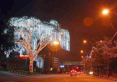 Selain bangunan, pokok-pokok besar juga dihiasi lampu